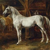 Теодор Жерико - фото gericault_white_horse-200x200, главная Интересное о лошади Разное , конный журнал EquiLIfe