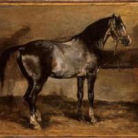 Теодор Жерико - фото gray-horse-rack.jpgLarge-200x200, главная Интересное о лошади Разное , конный журнал EquiLIfe