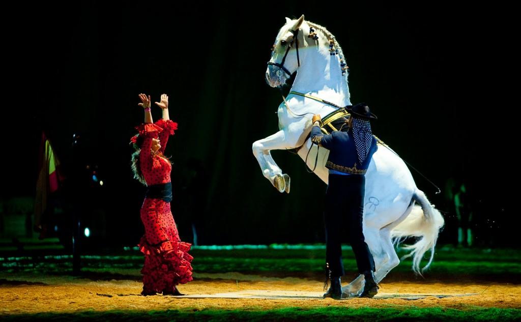 Российские конные выставки и фестивали в 2018 году - фото dancing-horse-picture-2013-02-1024x633, главная Новости , конный журнал EquiLIfe