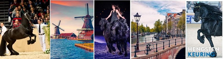 Конные поездки с EquiLife.ru - фото -и-фризы, , конный журнал EquiLIfe
