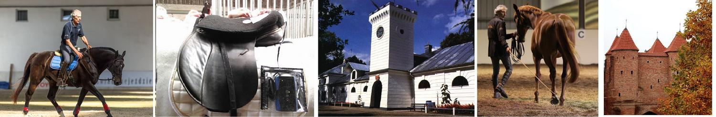3-7 октября 2019 (Польша) Маноло Мендес - Испанской школы верховой езды (Херес) - фото , , конный журнал EquiLIfe