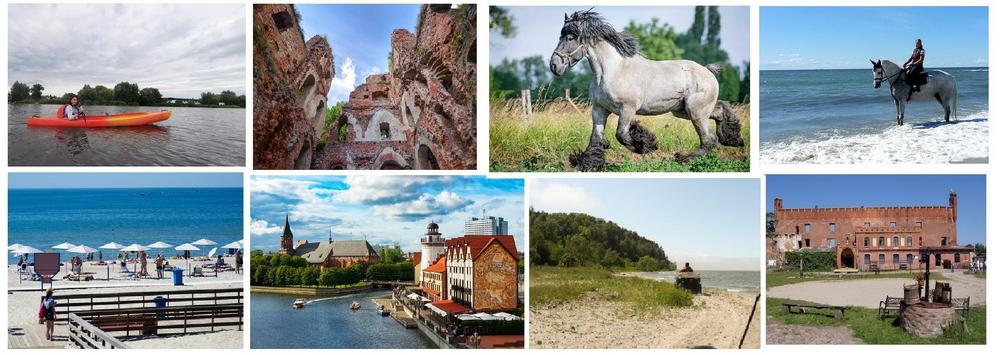 Конные поездки с EquiLife.ru - фото 01-2, , конный журнал EquiLIfe