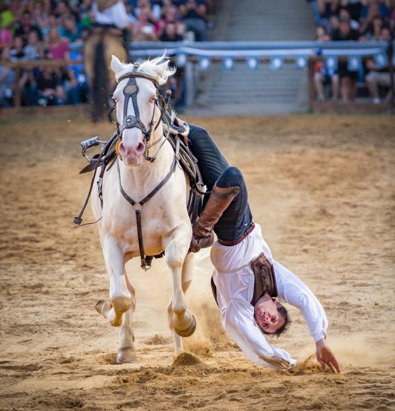 Интервью с каскадером шоу Люраши - Yann Vaille - фото 07ян, Recommendation Интервью , конный журнал EquiLIfe