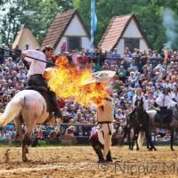 Международный WORKSHOP 2019 от Ани Беран и Сказочная Бавария - фото 10496954_267506993442917_312243801817305826_o-200x200, , конный журнал EquiLIfe