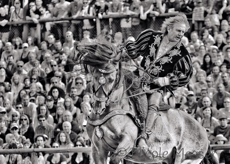 Интервью с каскадером шоу Люраши - Yann Vaille - фото 1957876_307727792754170_6236901763646882468_o-копия, главная Интервью , конный журнал EquiLIfe