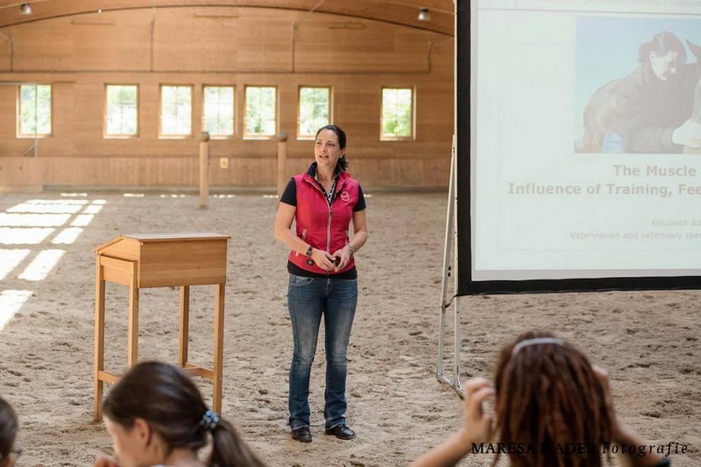 Workshop 2018 от Ани Беран как это было - фото 37373937_2080792441952768_2323984293942001664_o, Аня Беран главная События Содержание лошади Тренинг , конный журнал EquiLIfe