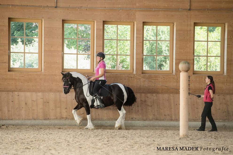 Workshop 2018 от Ани Беран как это было - фото 37384939_2080791598619519_456026343155433472_o-1, Аня Беран главная События Содержание лошади Тренинг , конный журнал EquiLIfe
