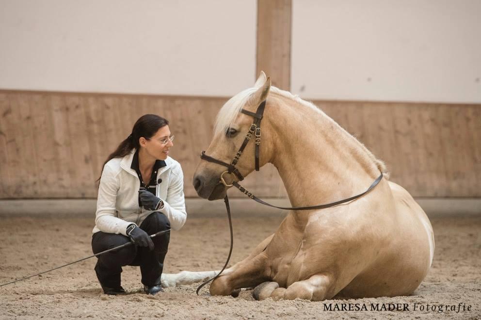 Workshop 2018 от Ани Беран как это было - фото 37386766_2080792688619410_7395028326080839680_o, Аня Беран главная События Содержание лошади Тренинг , конный журнал EquiLIfe