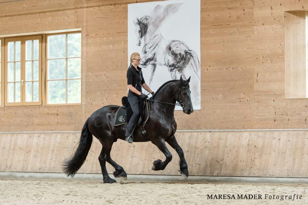 Workshop 2018 от Ани Беран как это было - фото 37656554_2086761178022561_1392575074791325696_o, Аня Беран главная События Содержание лошади Тренинг , конный журнал EquiLIfe