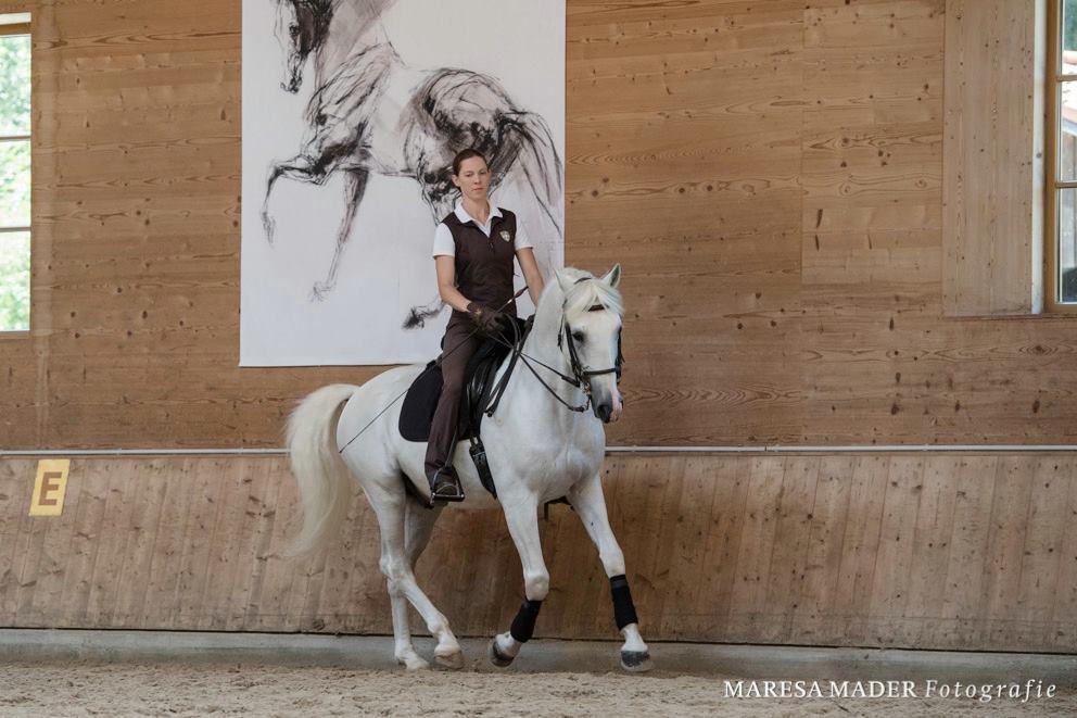 Workshop 2018 от Ани Беран как это было - фото 37675280_2089293694435976_4068640631377887232_o, Аня Беран главная События Содержание лошади Тренинг , конный журнал EquiLIfe