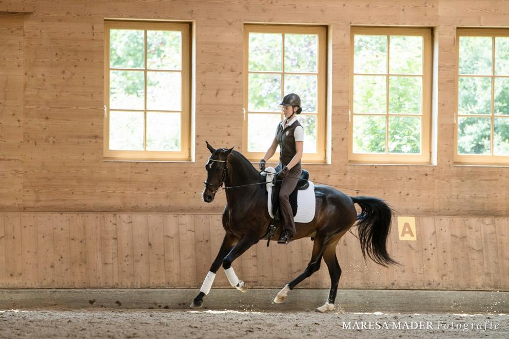 Workshop 2018 от Ани Беран как это было - фото 37678320_2089293557769323_8248500110900592640_o, Аня Беран главная События Содержание лошади Тренинг , конный журнал EquiLIfe