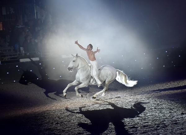 Салон дю Шеваль 2018 и Париж - фото 560d68084dd0937b3c7f71c5_Salon-de-Cheval-paris-equestrian-show-cr-courtesy, , конный журнал EquiLIfe