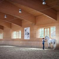 Международный WORKSHOP 2019 от Ани Беран и Сказочная Бавария - фото IMG_09101-200x200, , конный журнал EquiLIfe