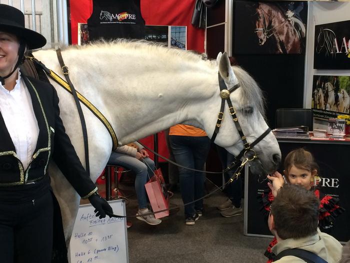 Главная конная выставка Европы - EQUITANA 2022 - фото IMG_6305, , конный журнал EquiLIfe