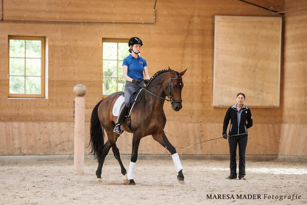 Международный WORKSHOP 2019 от Ани Беран и Сказочная Бавария - фото MMD4383, , конный журнал EquiLIfe