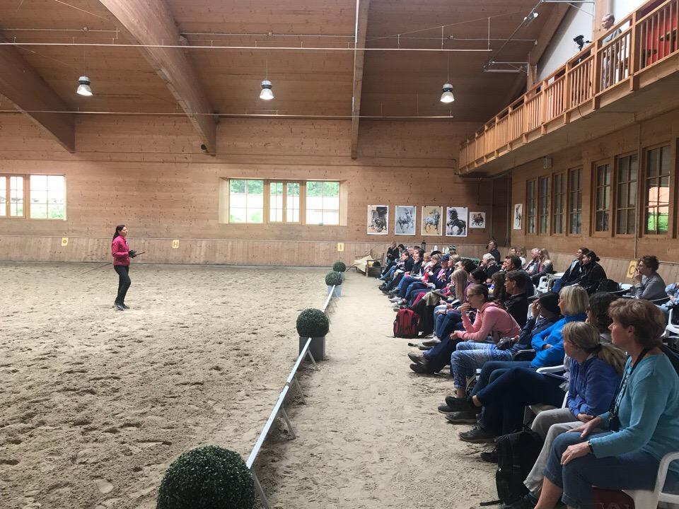 Международный WORKSHOP 2019 от Ани Беран и Сказочная Бавария - фото STW0pq6dtgk, , конный журнал EquiLIfe