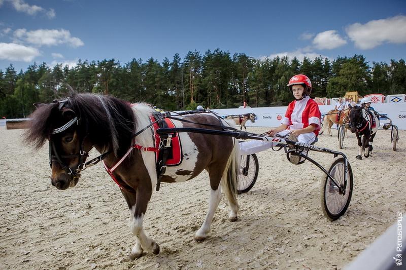 Международный конный Фестиваль «Иваново поле» - фото U7bsILdDE20, главная Новости События , конный журнал EquiLIfe