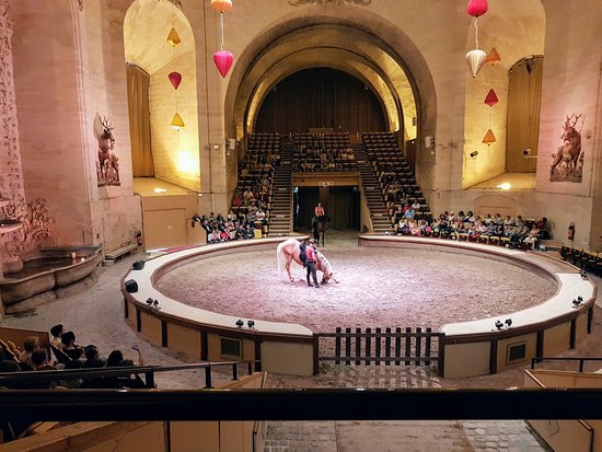 Салон дю Шеваль 2018 и Париж - фото musee-du-cheval-chantilly-1, , конный журнал EquiLIfe