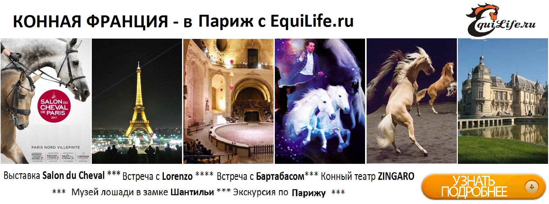Лошади cвязывают разные места с различными эмоциями - фото , главная Новости Тренинг , конный журнал EquiLIfe