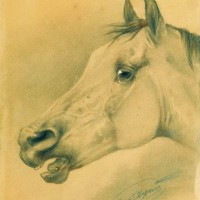 Художник-анималист Николай Егорович Сверчков  - фото 147382564-200x200, главная Фото , конный журнал EquiLIfe