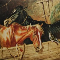 Художник-анималист Николай Егорович Сверчков  - фото 151005035646-200x200, главная Фото , конный журнал EquiLIfe