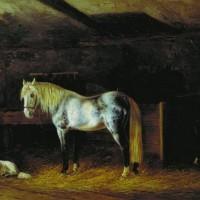 Художник-анималист Николай Егорович Сверчков  - фото 1727018510-200x200, главная Фото , конный журнал EquiLIfe