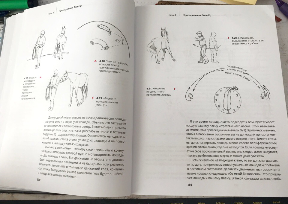 """О книге Монти Робертса """"Из рук в руки"""": о """"Join-up"""", но не только о нем! - фото doFLw5t2t0g, главная Книги о лошадях , конный журнал EquiLIfe"""