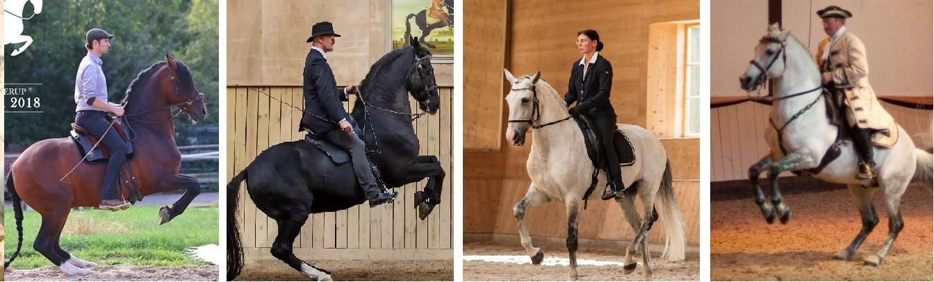 30 мая - 3 июня 2019 – Германия - Классическая выездка - фото 3, , конный журнал EquiLIfe