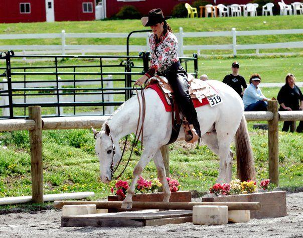 Прикладные виды конного спорта и туризма - фото 1eb9594399fde7101b8d57af7dd9b62a, главная Разное , конный журнал EquiLIfe