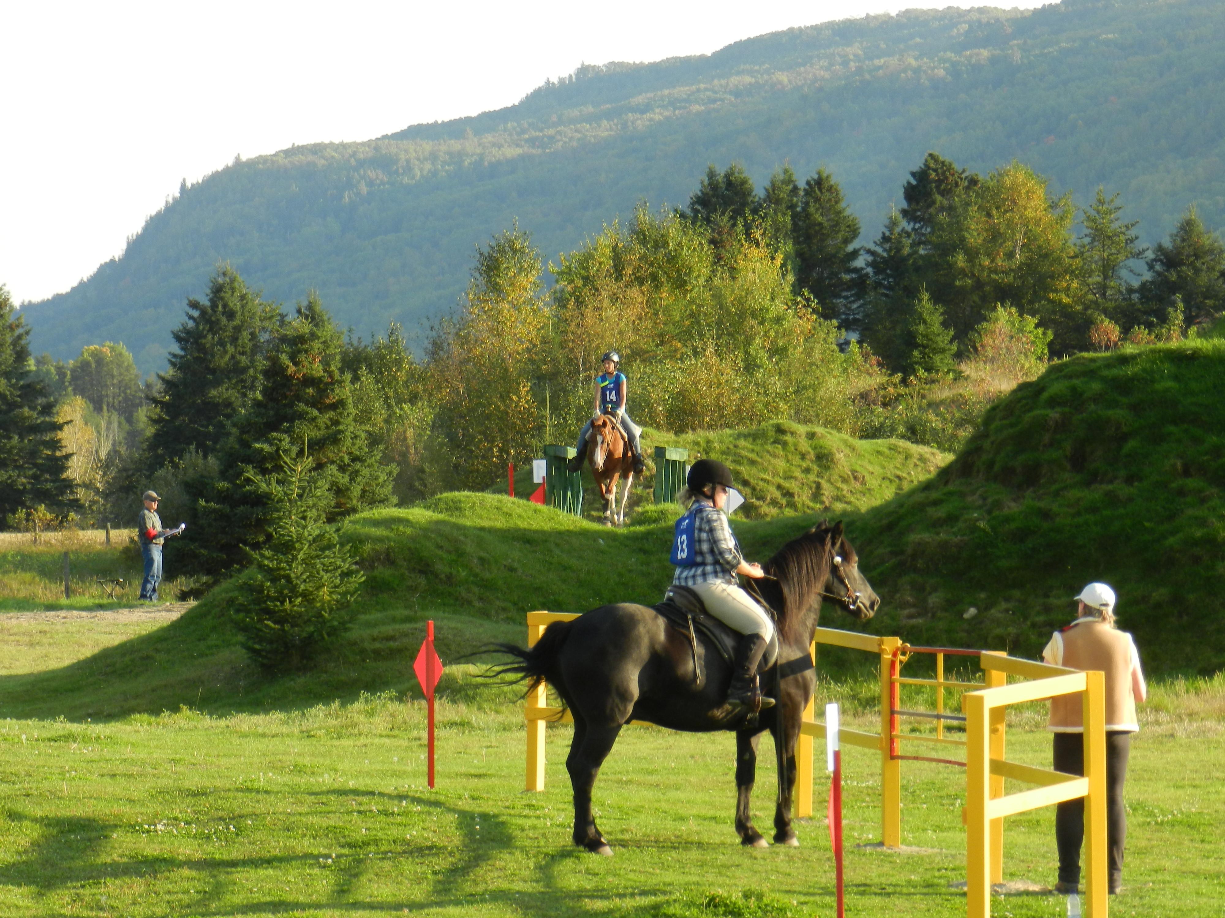 Прикладные виды конного спорта и туризма - фото TREC-Charlevoix, главная Разное , конный журнал EquiLIfe