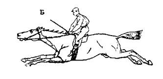 Ошибки конной живописи. Часть 1 - фото YKgI_T7iCVA, главная Книги о лошадях , конный журнал EquiLIfe