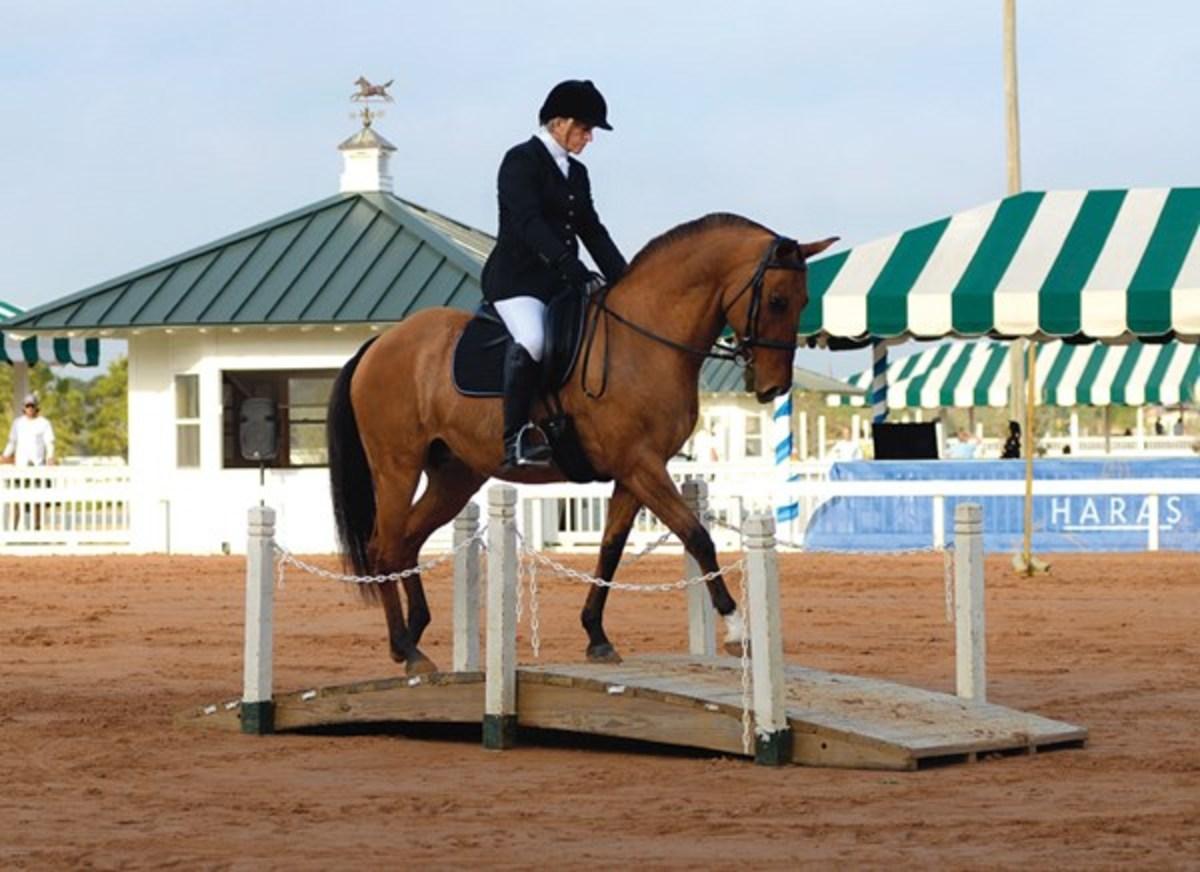 Прикладные виды конного спорта и туризма - фото dtmp-130800-working-01, главная Разное , конный журнал EquiLIfe