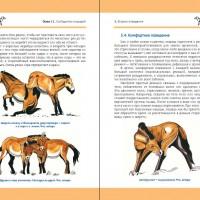 Лошадь Пржевальского: Последняя дикая лошадь на планете - фото index1-200x200, главная Книги о лошадях , конный журнал EquiLIfe