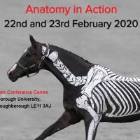 АНГЛИЯ (и Шотландия) с EquiLife.ru  22-28 февраля-1 марта 2020 года. - фото -200x200, , конный журнал EquiLIfe