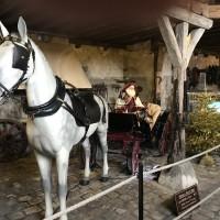 Франция с EquiLife.ru 22-28 ноября 2018 - фото IMG_7212-200x200, , конный журнал EquiLIfe