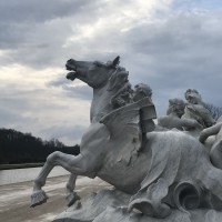 Франция с EquiLife.ru 22-28 ноября 2018 - фото IMG_7262-200x200, , конный журнал EquiLIfe