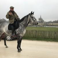 Франция с EquiLife.ru 22-28 ноября 2018 - фото IMG_7352-200x200, , конный журнал EquiLIfe