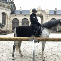 Франция с EquiLife.ru 22-28 ноября 2018 - фото IMG_7370-200x200, , конный журнал EquiLIfe