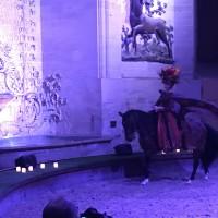 Франция с EquiLife.ru 22-28 ноября 2018 - фото IMG_7422-200x200, , конный журнал EquiLIfe
