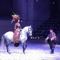 Франция с EquiLife.ru 22-28 ноября 2018 - фото IMG_7503-200x200, , конный журнал EquiLIfe