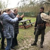 Франция с EquiLife.ru 22-28 ноября 2018 - фото IMG_7915-200x200, , конный журнал EquiLIfe