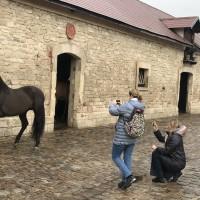 Франция с EquiLife.ru 22-28 ноября 2018 - фото IMG_7949-200x200, , конный журнал EquiLIfe