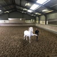 Франция с EquiLife.ru 22-28 ноября 2018 - фото IMG_8020-200x200, , конный журнал EquiLIfe