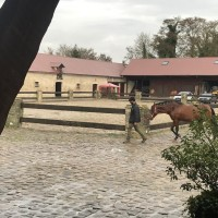 Франция с EquiLife.ru 22-28 ноября 2018 - фото IMG_8026-200x200, , конный журнал EquiLIfe
