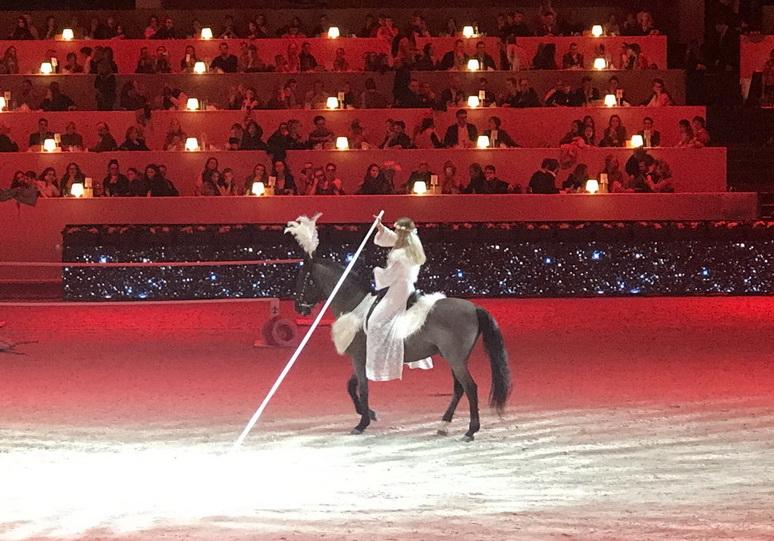 Парижская выставка Salon du Cheval 2018 - фото IMG_7108, главная Конные истории События Содержание лошади , конный журнал EquiLIfe