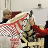 EQUITANA - фото IMG_030_wm-200x200, Новости , конный журнал EquiLIfe