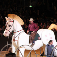 EQUITANA - фото IMG_0757-200x200, Новости , конный журнал EquiLIfe