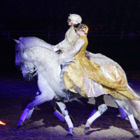 EQUITANA - фото IMG_1581-200x200, Новости , конный журнал EquiLIfe
