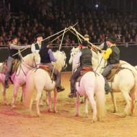 EQUITANA - фото IMG_1631-200x200, Новости , конный журнал EquiLIfe