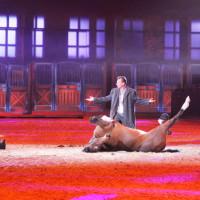 EQUITANA - фото IMG_1736-200x200, Новости , конный журнал EquiLIfe